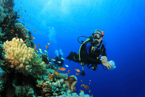 scuba diving certification levels