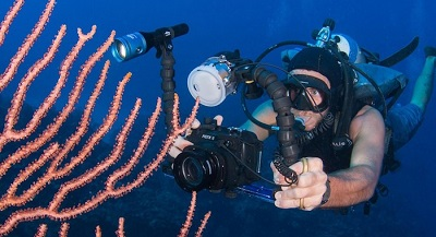 Diving With a Camera