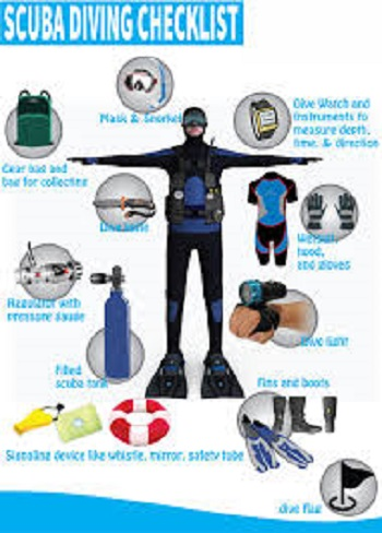 Gear Checks: How to Clean and Maintain Your Dive Gear