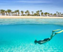 What to Expect Scuba Diving in Egypt
