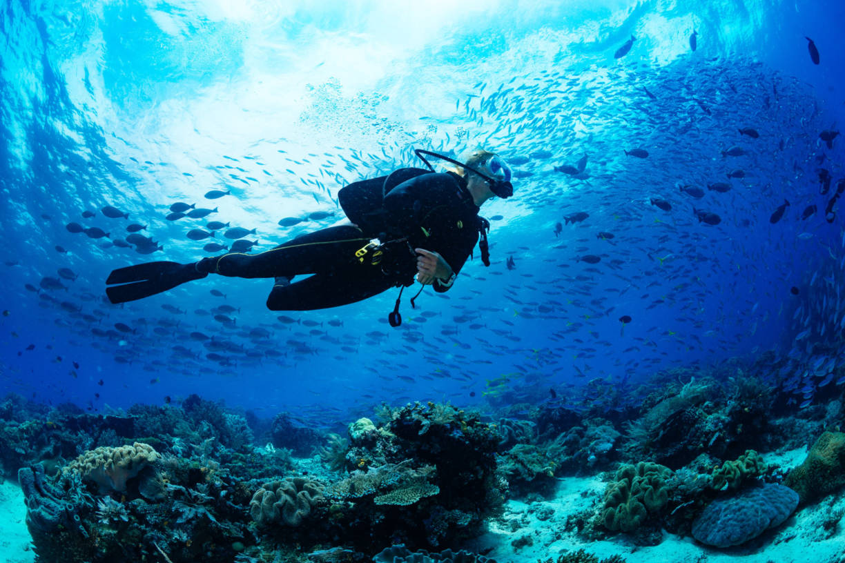diving destinations