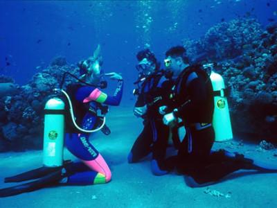 Best Scuba Diving Classes NJ