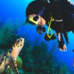 Advanced diver with turtle in NJ