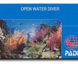 How To Get PADI Certified