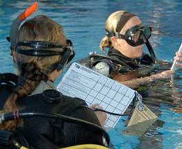 PADI Assistant Instructor NJ