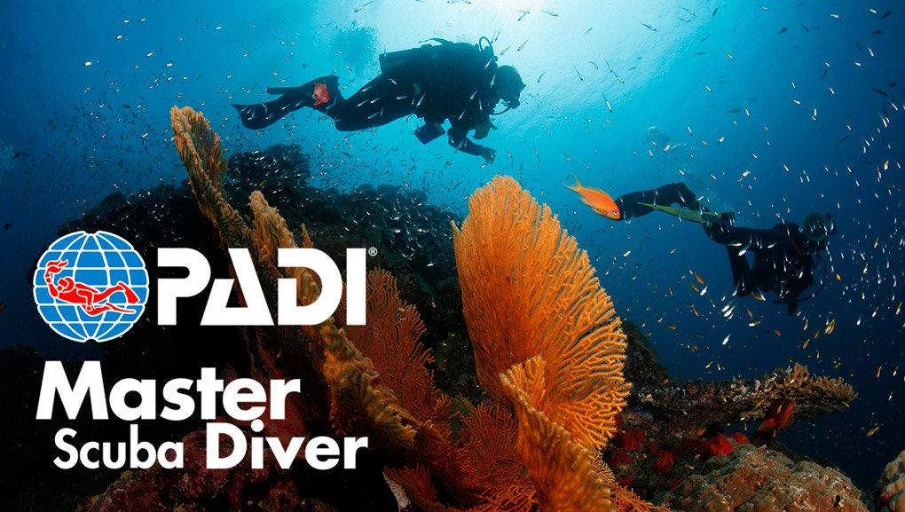 Padi Master Scuba Diver Certification In Nj Scuba Diving Courses