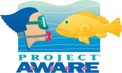 project aware NJ