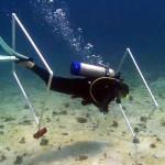 peak performance buoyancy nj