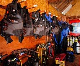 Scuba Diving Classes Near Me