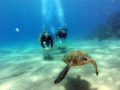 The Best Scuba Diving Locations In The World Scuba Diving - The 10 best scuba diving locations in the world